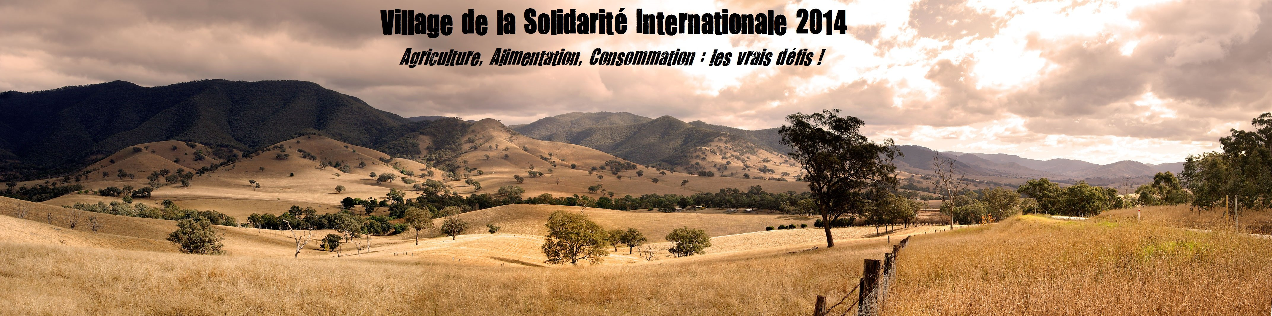 Village de la Solidarité Internationale 2014